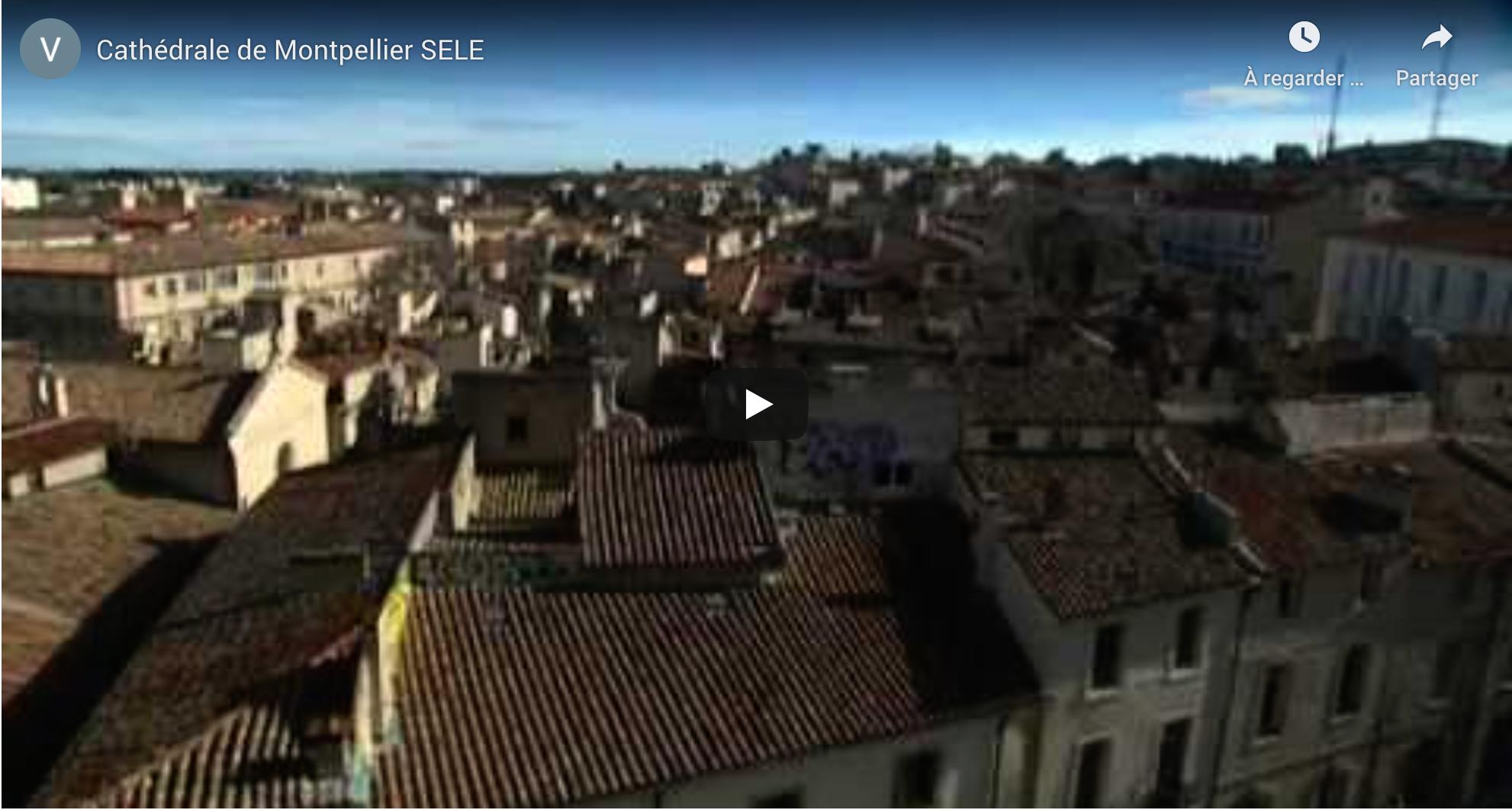 Rénovation de la Cathédrale de Montpellier