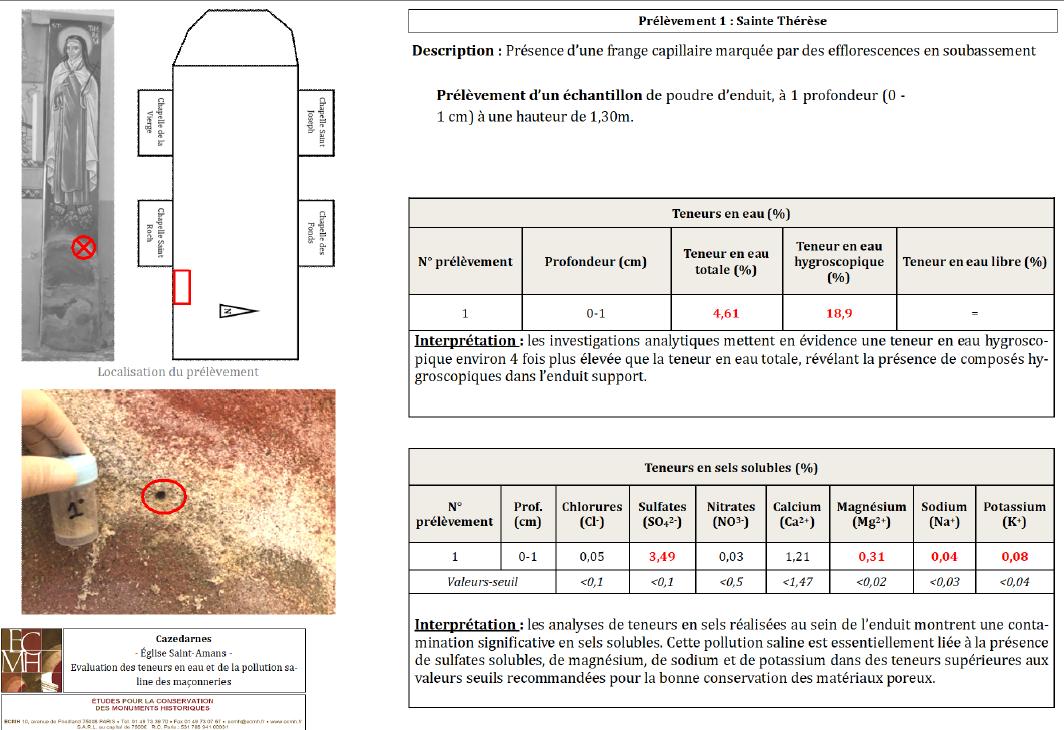 Fiche d'analyse réalisée pour le diagnostic sanitaire des décors peints